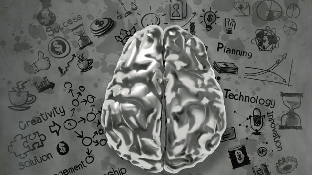 How Does the Brain Learn Best? Smart Studying Strategies – Telegraph